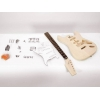 Guitar construction kit